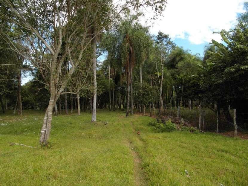 Terreno de 12 hectáreas - 1