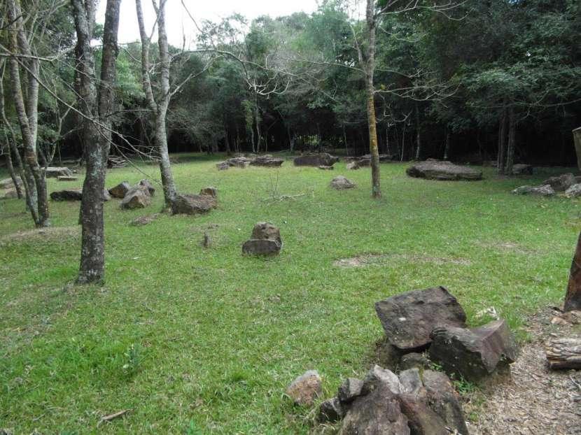 Terreno de 12 hectáreas - 4