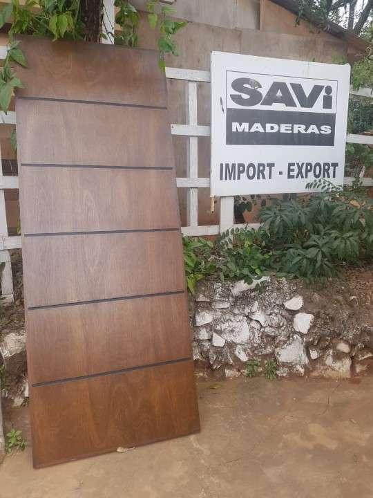 Puertas macizas para exterior diseños varios - 3