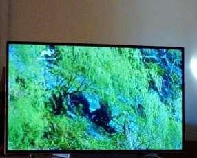 TV LCD de 49 pulgadas