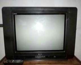 Televisor de 20 pulgadas