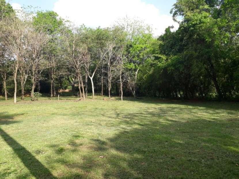 Terrenos 32x113 en Ruta Capiatá Thompson - Ypané - 5