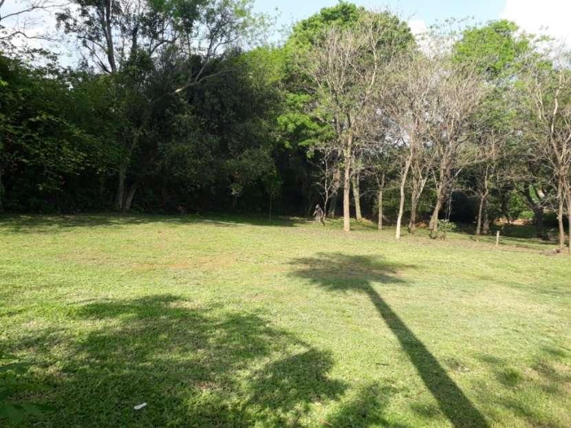 Terrenos 32x113 en Ruta Capiatá Thompson - Ypané - 6