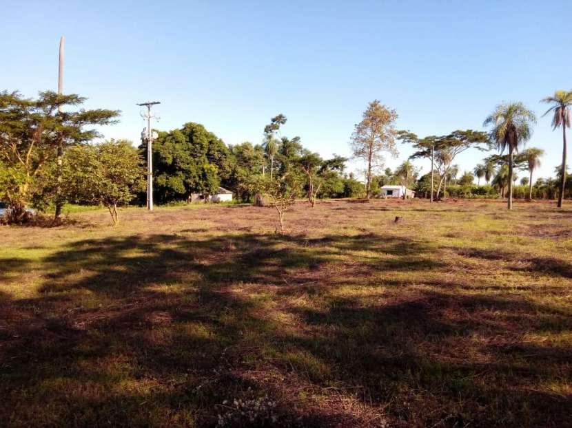 Terreno de 12x36 en Ruta 1 Km 31 - 2