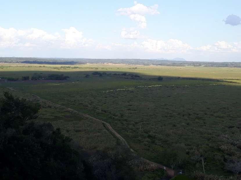 1.050 hectáreas en Nueva Italia Central - 2