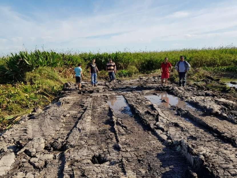1.050 hectáreas en Nueva Italia Central - 4