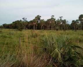 Terreno de 1.400 hectáreas en Villeta