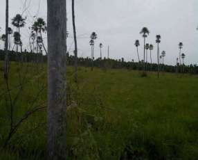 Terreno de 400 hectáreas en Villeta