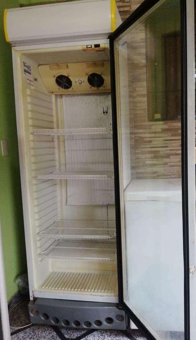 Congelador y Visicoolers - 0