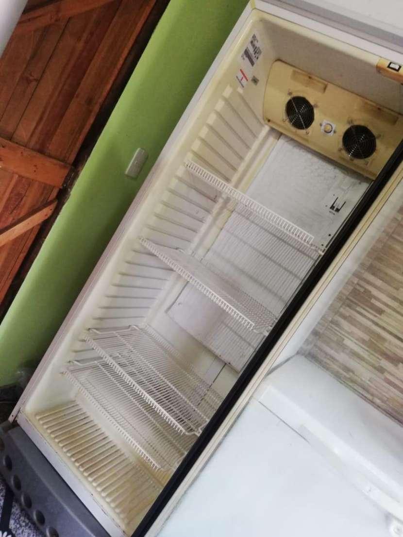 Congelador y Visicoolers - 1
