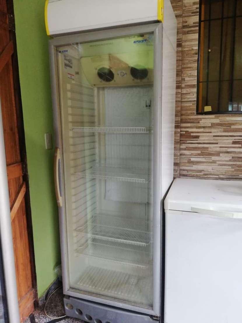 Congelador y Visicoolers - 2