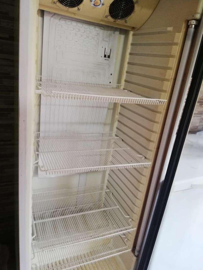 Congelador y Visicoolers - 3