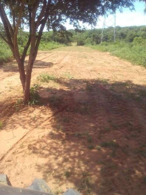Terrenos a cuotas en Caacupé - 0