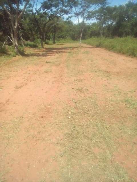 Terrenos a cuotas en Caacupé - 3