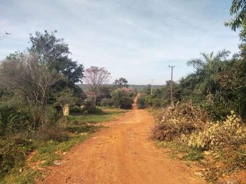 Terreno en Nueva Colombia - 7