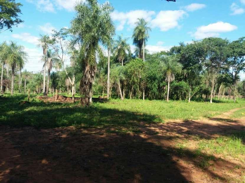 Terreno en J. Augusto Saldivar - 3