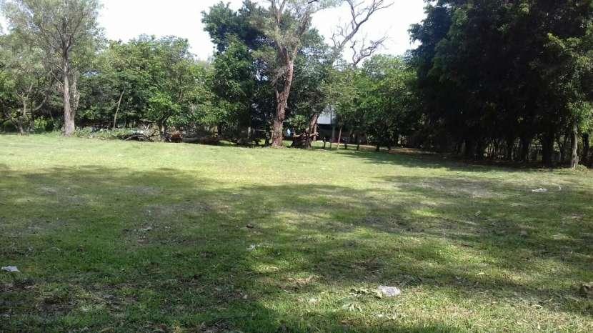 Terrenos en San Lorenzo - 3