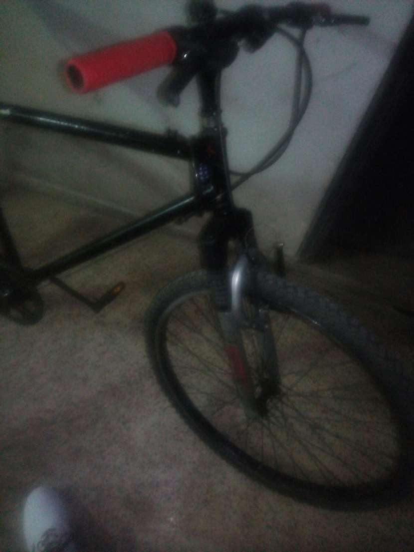 Bicicleta Bizarre - 4