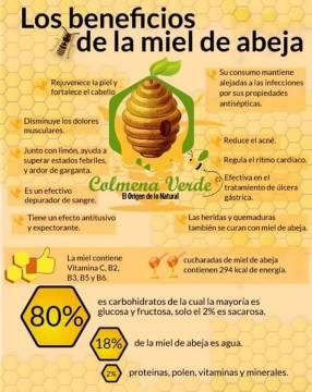 Miel de abeja del chaco