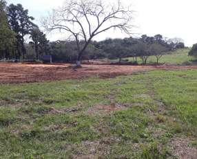 Terrenos en Caraguatay