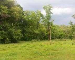 Terreno de 12.5 hectáreas