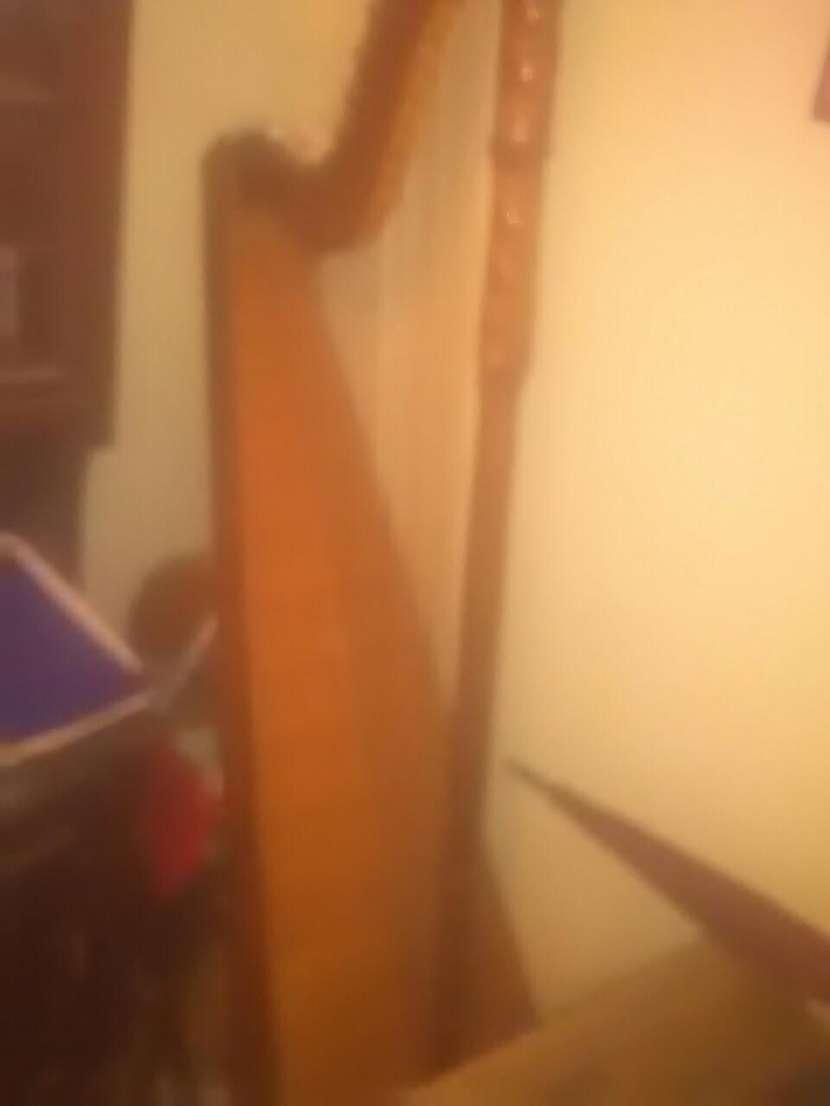 Guitarra reqinto profeaional - 1