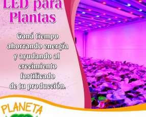 Iluminación LED para plantas red
