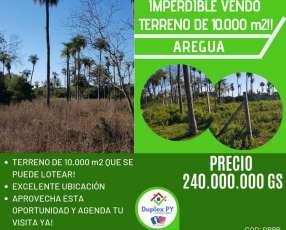 Terreno 10.000 m2 en Areguá