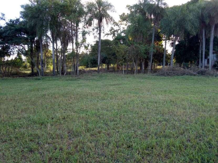 Propiedad de 2 hectáreas en Yaguarón - 1