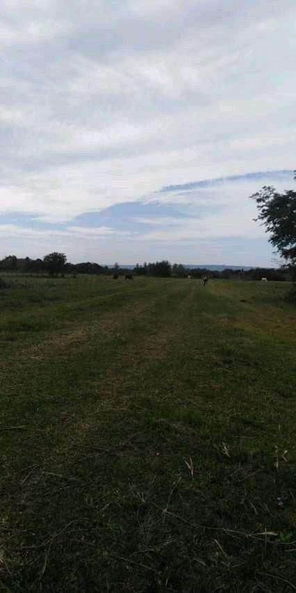 Terrenos a cuotas corridas en Ypacaraí - 0
