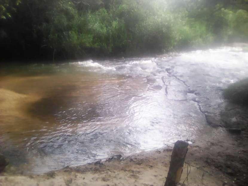 Propiedad de 2 hectáreas en Yaguarón - 3