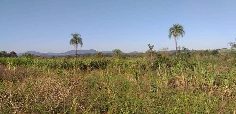 Terreno de 12 hectáreas en Colonia Independencia - 1