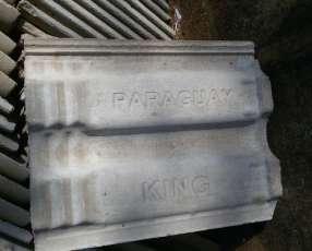 Tejas king Paraguay