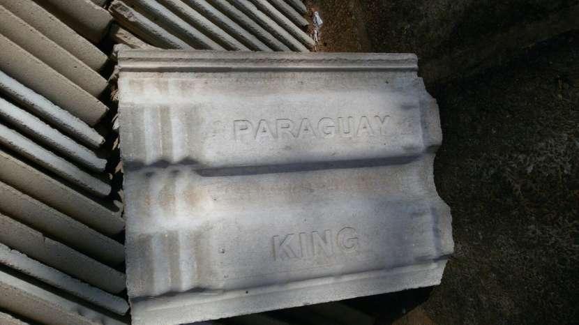 Tejas king Paraguay - 0