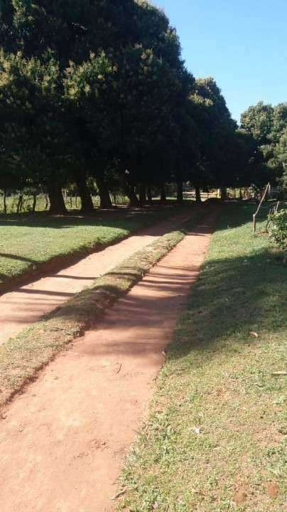 2,7 hectáreas en Emboscada - 0