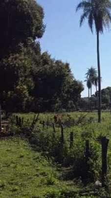 2,7 hectáreas en Emboscada - 1
