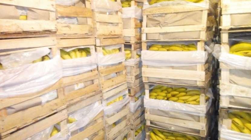 Venta de bananas - 2