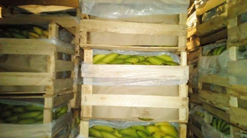 Venta de bananas - 1