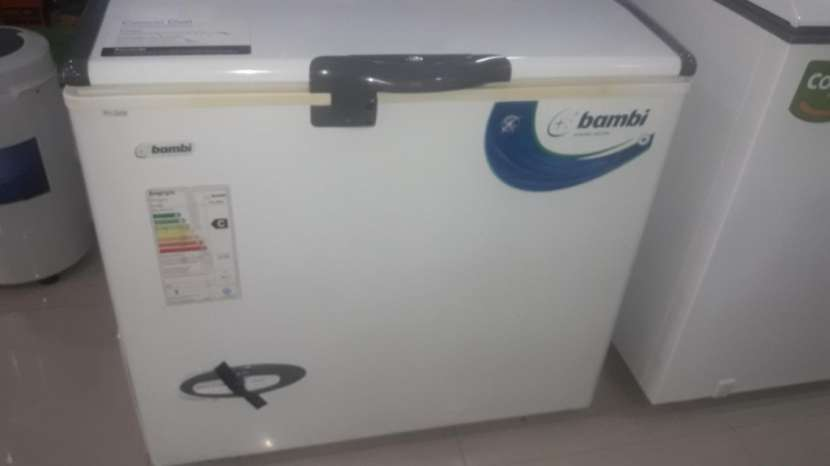 Freezer Bambi 238 litros 1T HP-FH2600 - 0