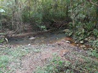 Terreno de 42 hectáreas en Acahay COD 2279 - 2