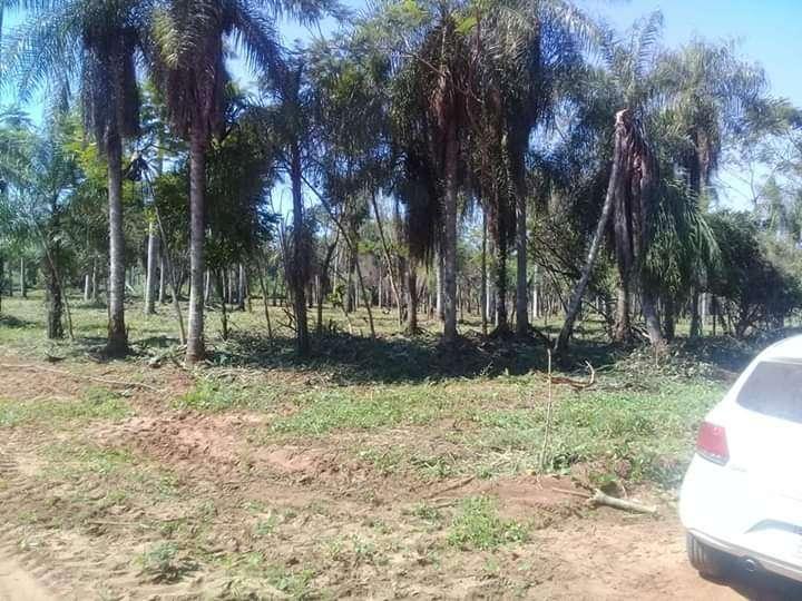 Terrenos en Capiatá y J. Augusto Saldivar - 2