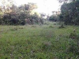 Terreno de 42 hectáreas en Acahay COD 2279 - 1