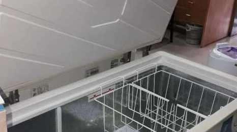Freezer Bambi 312 litros 1T HP-FH3300 - 2