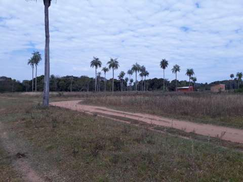 Terrenos en Ypacaraí - 0