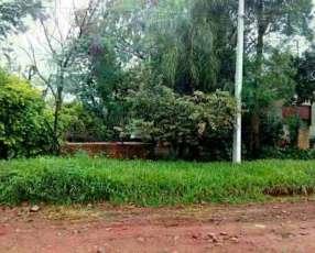 Terreno 12x30 en Mora Cue Luque