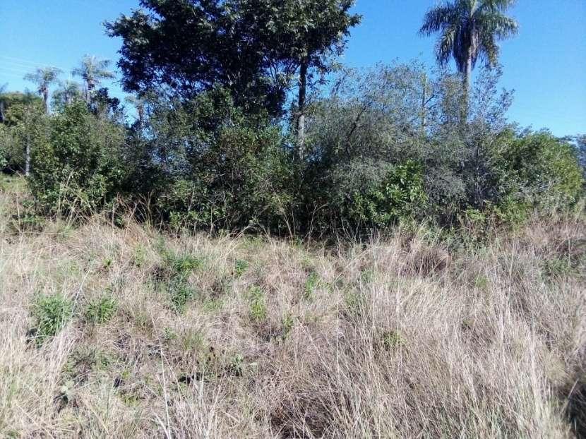 Terreno en Areguá Valle Pucú - 5