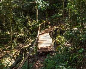 Traslado y Tour al Cerro Tres Kandu
