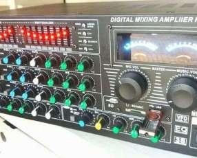 Amplificador grande profesional