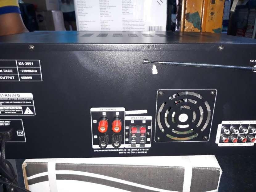 Amplificador grande profesional - 5