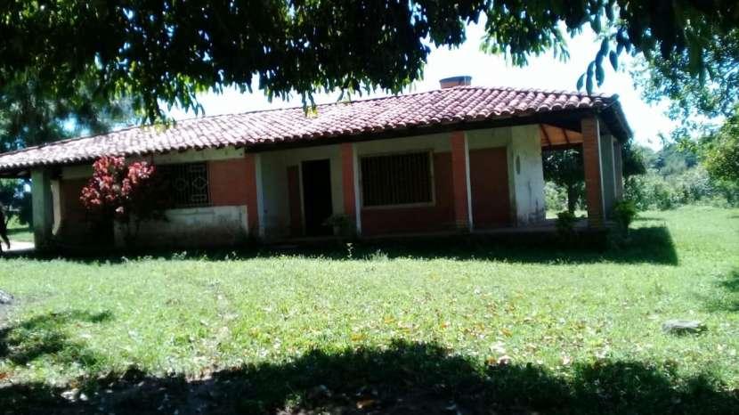 Campo yaguaron km 54 - 2
